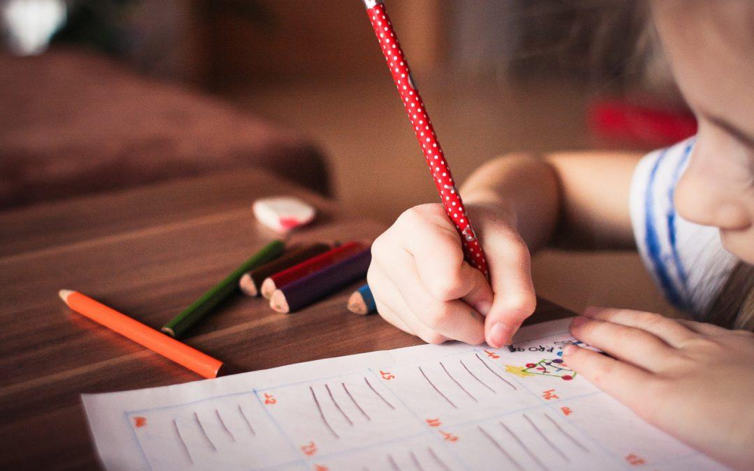 Projekt Rozporządzenia MEN w sprawie sposobu i trybu organizowania indywidualnego obowiązku rocznego przygotowania przedszkolnego i indywidualnego nauczania dzieci i młodzieży